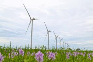 parque-eolico-honda-energy